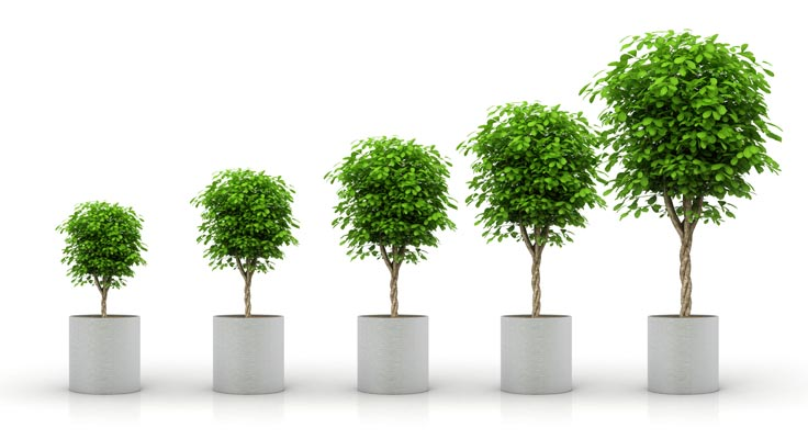 5 Tips for Sustainable Investment Growth in Florida